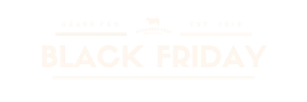 Black Friday Offer Email Header (2)