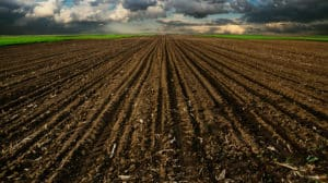 Plowed field that's empty